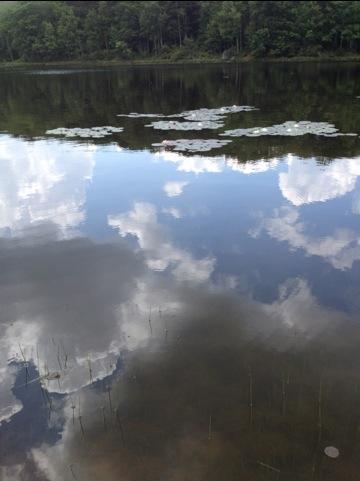 20120619-104112.jpg